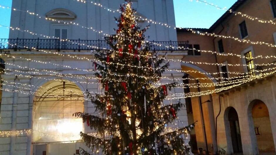 albero di Natale Pisa